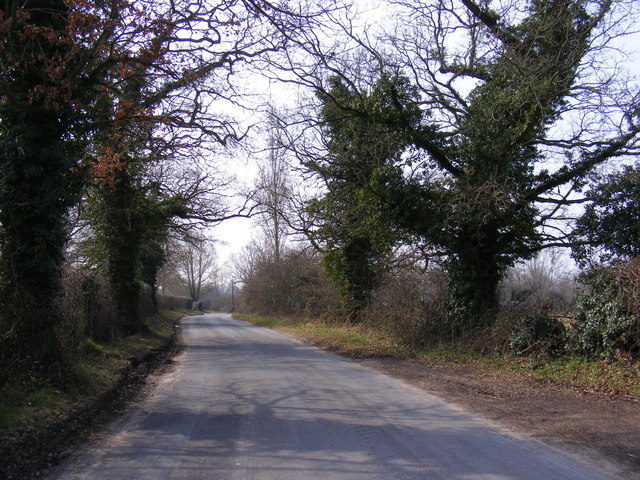 The Street, Wramplingham