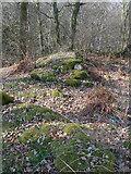 NH5857 : Surviving walls of Drummondreach Fort by Julian Paren