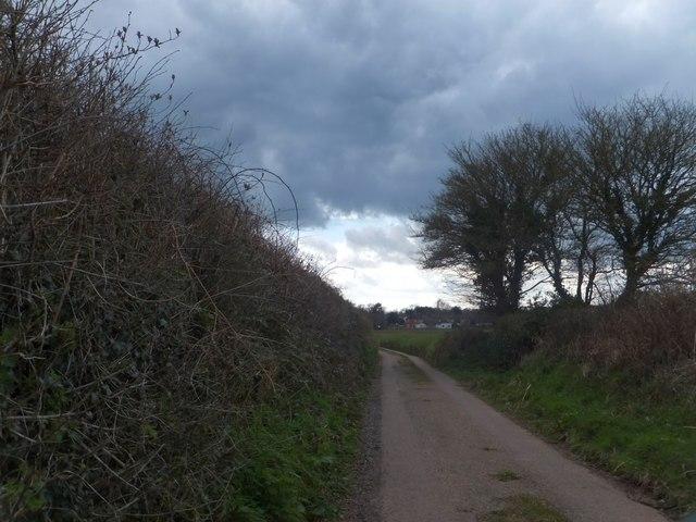 Approaching Colestocks