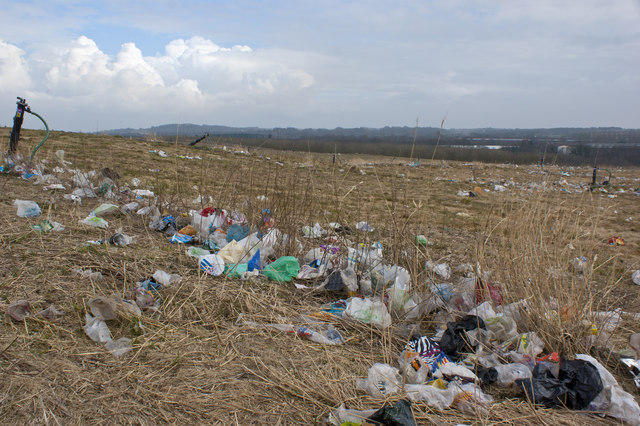 A walk here would encourage anyone to promote re-usable bags
