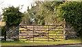 J4159 : Field gate, Saintfield by Albert Bridge