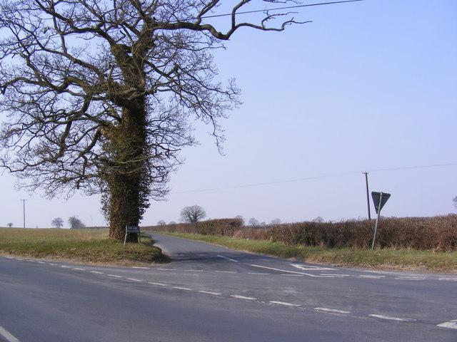 Dark Lane, Kimberley