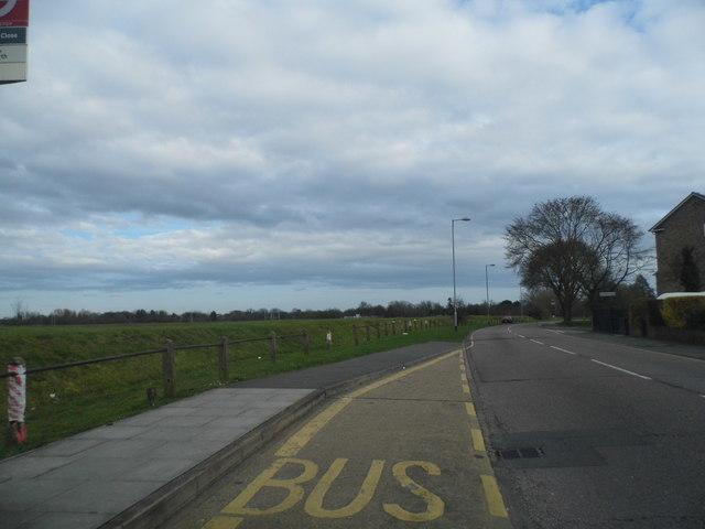 Elmwood Avenue overlooking Hanworth Park