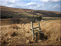 NY7801 : Redundant stile above Outhgill by Karl and Ali