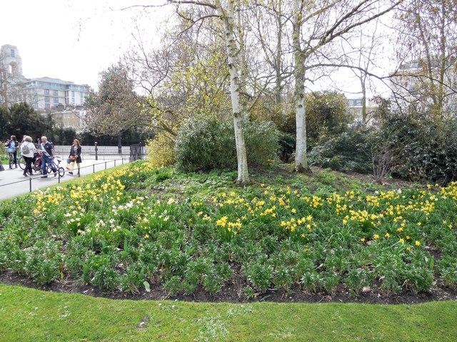 Flowers at SW of Regent's Park