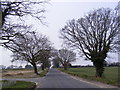 TM2994 : B1532 Church Road, Woodton by Adrian Cable