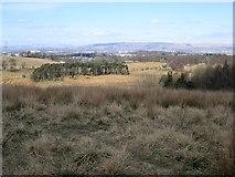 NS5161 : Hurlet Hill by Richard Webb