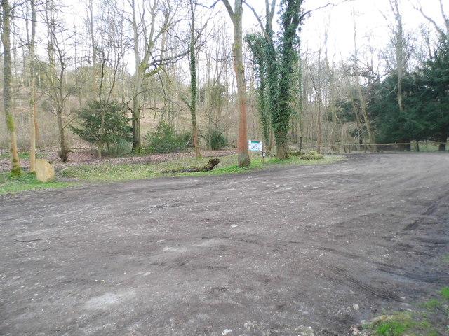 Car Park in the woods, Green Dene