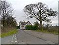 SJ7384 : Cherry Tree Lane by David Dixon