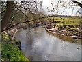 SJ7485 : River Bollin near Castle Hill by David Dixon