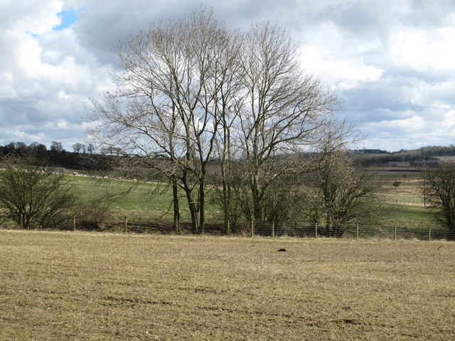 Farmland of Shildon Bog