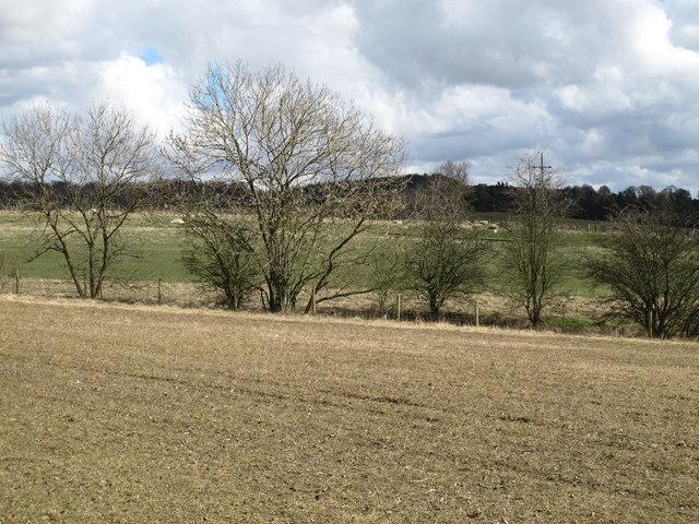 Farmland south of Greenleighton
