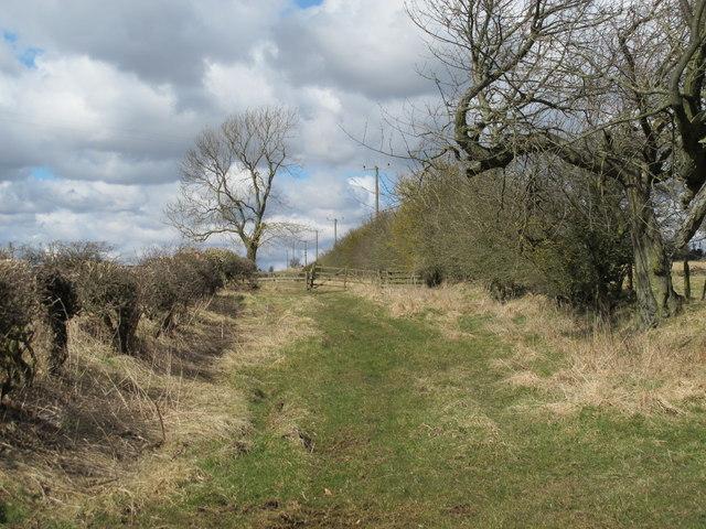 Path north of Greenleighton