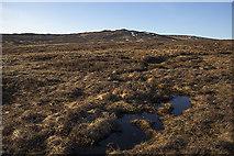 NN6467 : Moorland east of the Allt na Cosaig by William Starkey