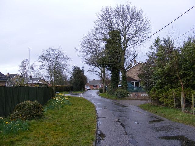 Carr Lane, Poringland