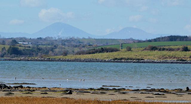 Ringneill Bay, Strangford Lough (1)