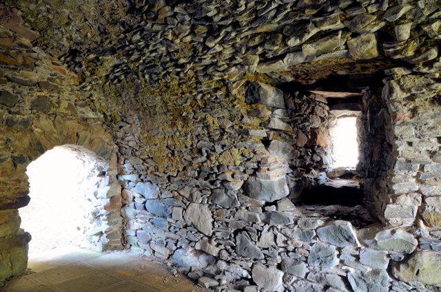 Mahee/Nendrum Castle (interior) (1)