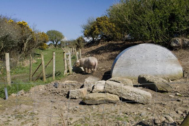 Pig house near Sheffield Quarry