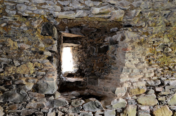 Mahee/Nendrum Castle (interior) (2)