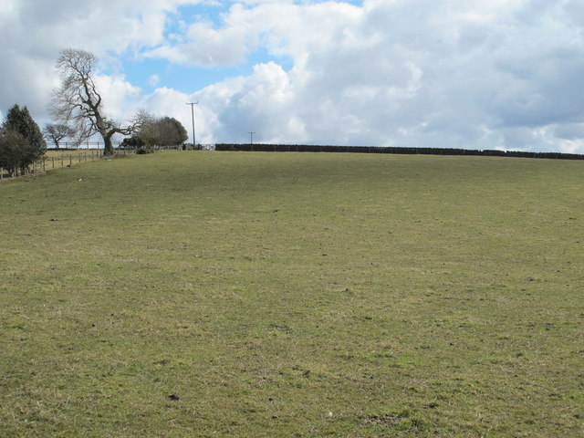Farmland southwest of Shildon (2)