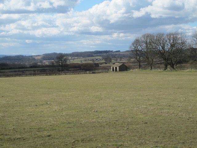 Farmland east of Carr Houses