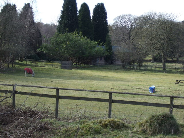Grazing, Shooting Butts Centre