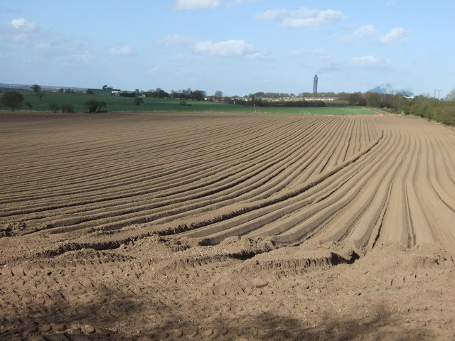 Ploughed field, Flaxley Green