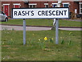 TM0979 : Rash's Crescent Sign by Adrian Cable