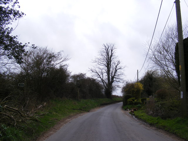 Rectory Road & footpaths to Ling Road & Angles Way