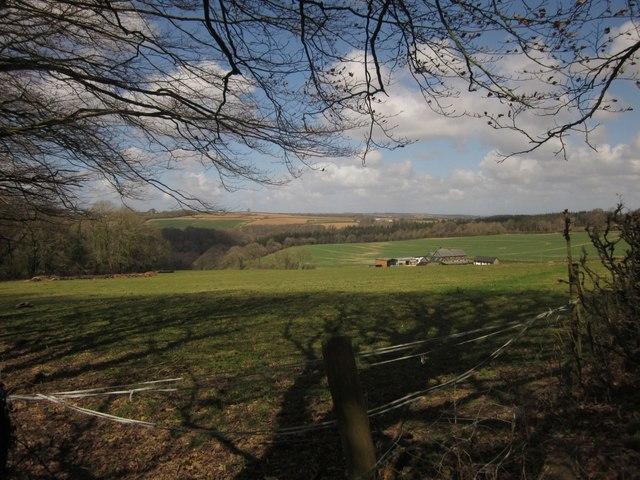 Kennels near Heywood Cross