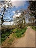 SS6611 : Footpath at Heywood by Derek Harper