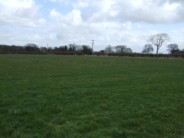 Farmland, Needwood