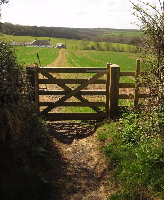 Path to the kennels