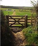 SS6611 : Path to the kennels by Derek Harper