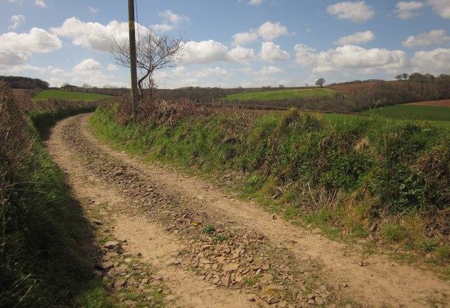 Labdon Lane