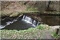 SD7315 : Weir on Bradshaw Brook by Philip Platt