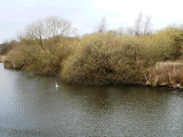 Springtime, west of Thelwall Ferry