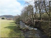 SJ1733 : Afon Ceiriog yn Tregeiriog by John Haynes