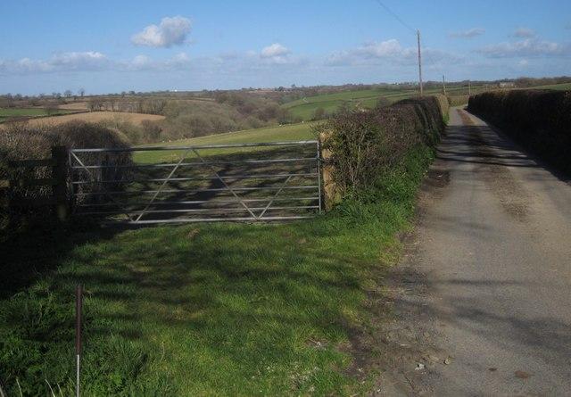 Lane to Coombe Farm