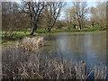 SU9570 : Leiper Pond by Alan Hunt