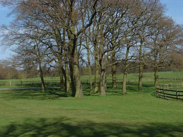 Slans Hill, Windsor Great Park