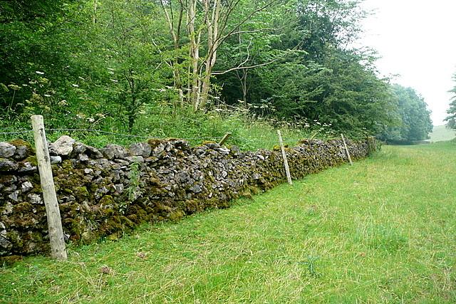 Bridleway through Long Dale