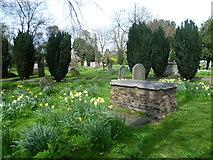 TQ2475 : In All Saints Churchyard, Fulham by Marathon