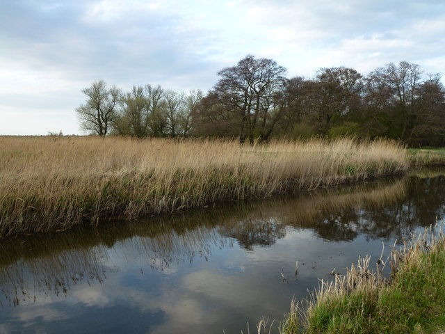 Morton's Leam and Lord's Holt at Eldernell - The Nene Washes
