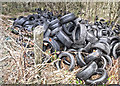 SJ9793 : Unlawfully dumped tyres by Stephen Burton