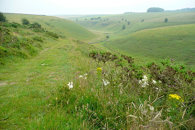 View into Long Dale