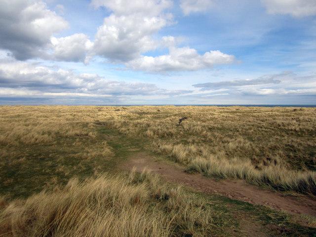 Sand dunes on Ross Links