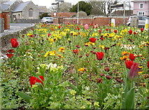 ST3049 : Floral display near St Andrew's by Neil Owen