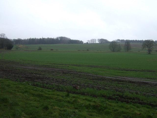 Farmland, Newbrough
