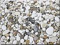 TA1967 : Pebble mix, Bridlington by Pauline E